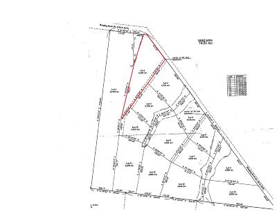 Altamont Residential Lots & Land For Sale: 2 Hanging Rock Dr