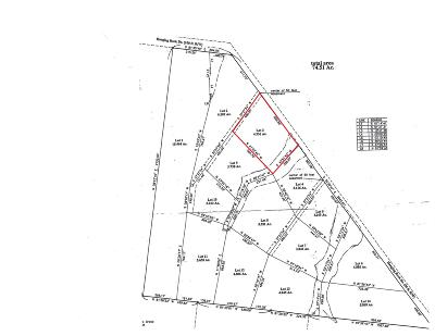 Altamont Residential Lots & Land For Sale: 3 Hanging Rock Dr