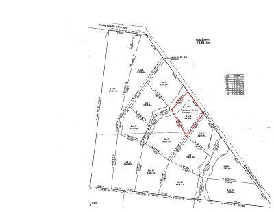 Altamont Residential Lots & Land For Sale: 4 Hanging Rock Dr