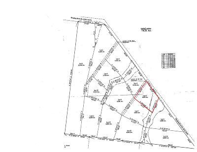 Altamont Residential Lots & Land For Sale: 5 Hanging Rock Dr
