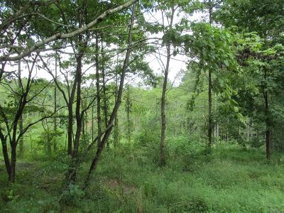 Christian County, Ky, Todd County, Ky, Montgomery County Residential Lots & Land For Sale: 4815 Ashland City Rd
