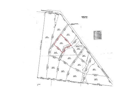 Altamont Residential Lots & Land For Sale: 9 Hanging Rock Dr