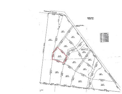 Altamont Residential Lots & Land For Sale: 10 Hanging Rock Dr