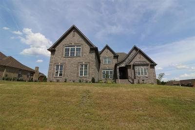 Mount Juliet Single Family Home For Sale: 10 Beechwood Court