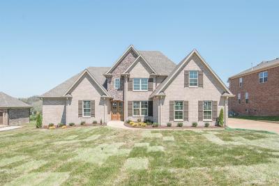 Hendersonville Single Family Home Active - Showing: 713 Shute Lane