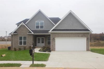 Farmington Single Family Home For Sale: 767 Farmington