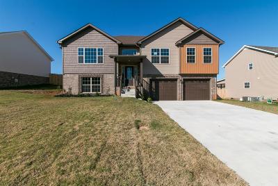 Clarksville Single Family Home For Sale: 989 Harding Dr