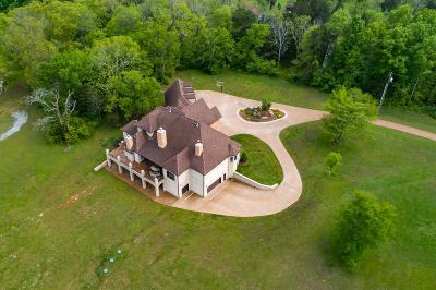 Goodlettsville Single Family Home For Sale: 1973 Tinnin Rd