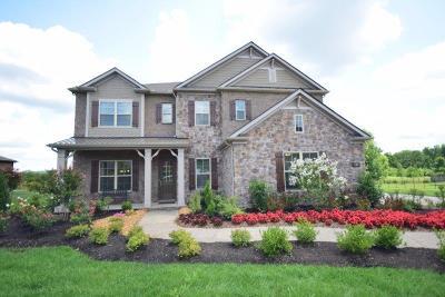 Nolensville Single Family Home For Sale: 752 Alameda Avenue #150