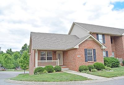 Clarksville Condo/Townhouse Under Contract - Showing: 135 Excell Rd Unit 1101 #1101