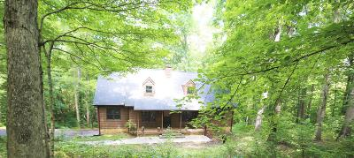 Kingston Springs Single Family Home For Sale: 1113 Blackburn Dr
