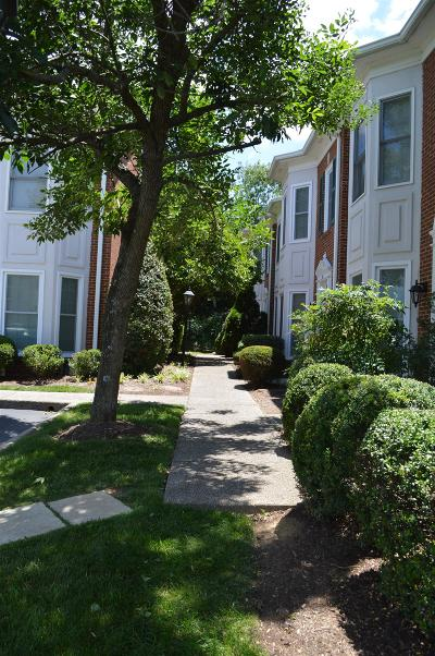 Nashville Condo/Townhouse For Sale: 4204 Hillsboro Pike Apt 113 #113