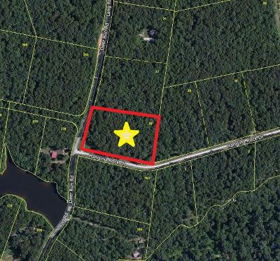 Altamont Residential Lots & Land For Sale: 28 Deer Run Rd