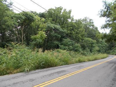 Joelton TN Residential Lots & Land For Sale: $49,900