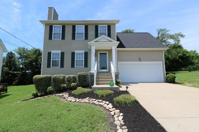 Davidson County Single Family Home For Sale: 3514 Longhaven Xing