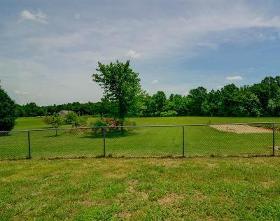 Joelton Single Family Home For Sale: 5950 Clarksville Pike