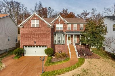 Mt Juliet Single Family Home For Sale: 1072 Willoughby Station Blvd