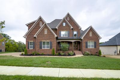 Nolensville Single Family Home For Sale: 9324 Norwegian Red Dr
