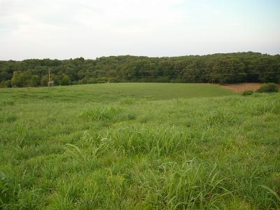 Mcewen Residential Lots & Land For Sale: Highway 70 E
