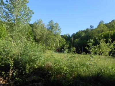 Liberty TN Residential Lots & Land For Sale: $349,000