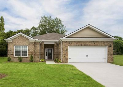 Gallatin Single Family Home For Sale: 828 Mesa Verde Place