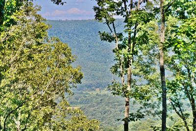 Sewanee Residential Lots & Land For Sale: 2 Horseshoe Ln