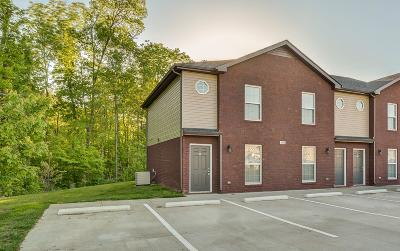 Christian County, Ky, Todd County, Ky, Montgomery County Rental For Rent: 2256 D McCormick #D