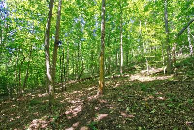 Residential Lots & Land For Sale: Rogers Hollow Rd