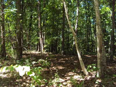Sparta TN Residential Lots & Land For Sale: $19,900