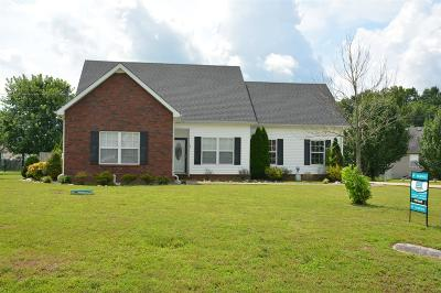 Christiana Single Family Home Under Contract - Showing: 241 Slow Waters Dr