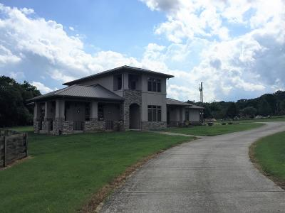 Smyrna Single Family Home For Sale: 7101 Rocky Fork Rd