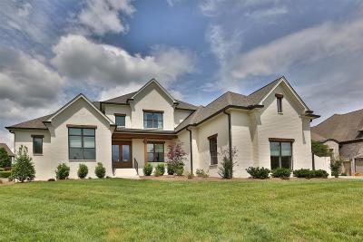 Hendersonville Single Family Home For Sale: 112 Bell Harbor