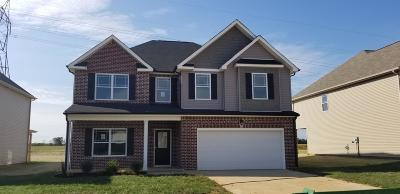 Clarksville Single Family Home For Sale: 51 Summerfield