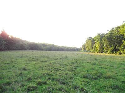 Centerville Residential Lots & Land For Sale: 1138 Mathis Hollow Rd