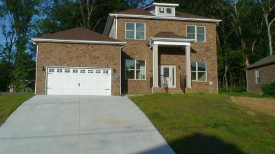 Nolensville Single Family Home For Sale: 1218 Ben Hill Blvd