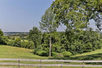 Lewisburg Single Family Home For Sale: 1897 Hatchett Hollow Rd