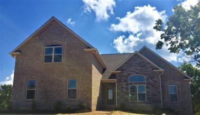 Mount Juliet TN Single Family Home Under Contract - Showing: $399,777