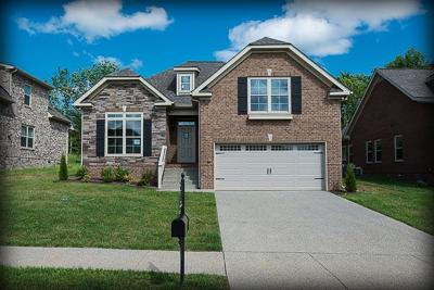 Spring Hill Single Family Home For Sale: 1019 Claymill Dr. Lot 709