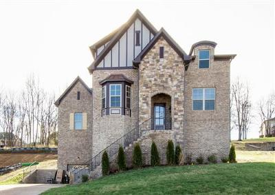 Nolensville Single Family Home For Sale: 204 Belvedere Circle