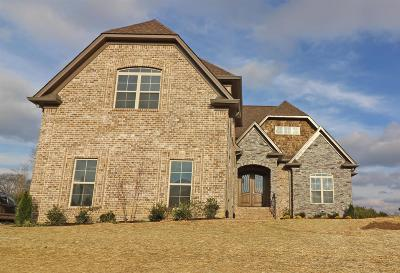 Mount Juliet Single Family Home For Sale: 20 Beechwood Court
