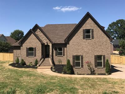 Sumner County Single Family Home For Sale: 443 Cumberland Hills Dr
