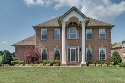 Sumner County Single Family Home For Sale: 533 Bay Point Dr