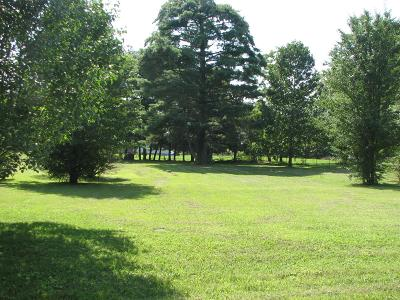 Residential Lots & Land For Sale: 171 Parks Rd