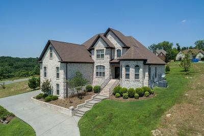Hendersonville Single Family Home For Sale: 114 Manor Way