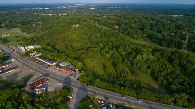 Goodlettsville Residential Lots & Land For Sale: 1304 S Dickerson Rd