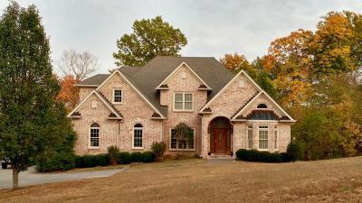 Williamson County Single Family Home For Sale: 2010 Artesian Dr