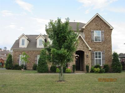 Hendersonville Single Family Home For Sale: 138 Windmill Pointe Cir