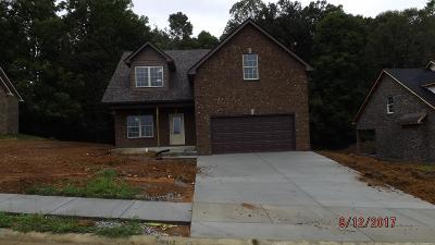 Ashland City Single Family Home For Sale: 14 Lot Bradley Bend