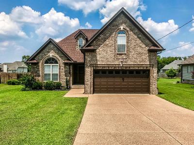 Mount Juliet Single Family Home For Sale: 205 Glade Dr
