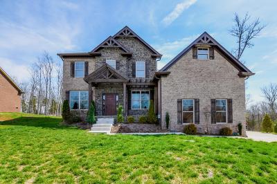 Mount Juliet Single Family Home For Sale: 209 Bobwood Dr
